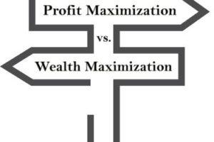 Profit Maximization vs. Wealth Maximization