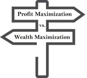 Profit vs. Wealth Maximization
