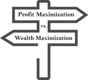 Profit vs. Wealth Maximization