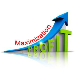 Profit Maximization or Maximization of Profits