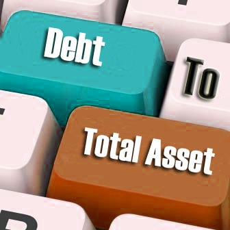 Debt to Total Asset Ratio