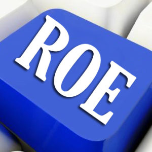 Return on Equity (ROE)