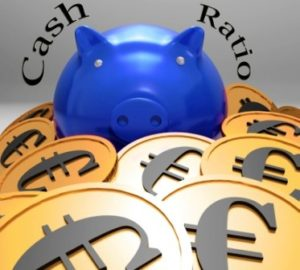 Piggybank Surrounded In Coins Showing European Savings