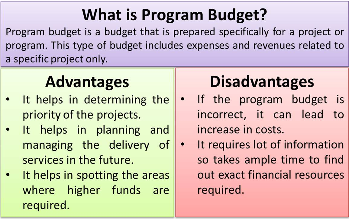 what is program budget advantages disadvantages
