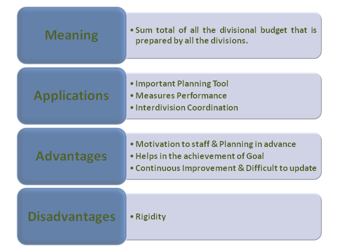 Master Budget | Meaning, Applications, Advantages and
