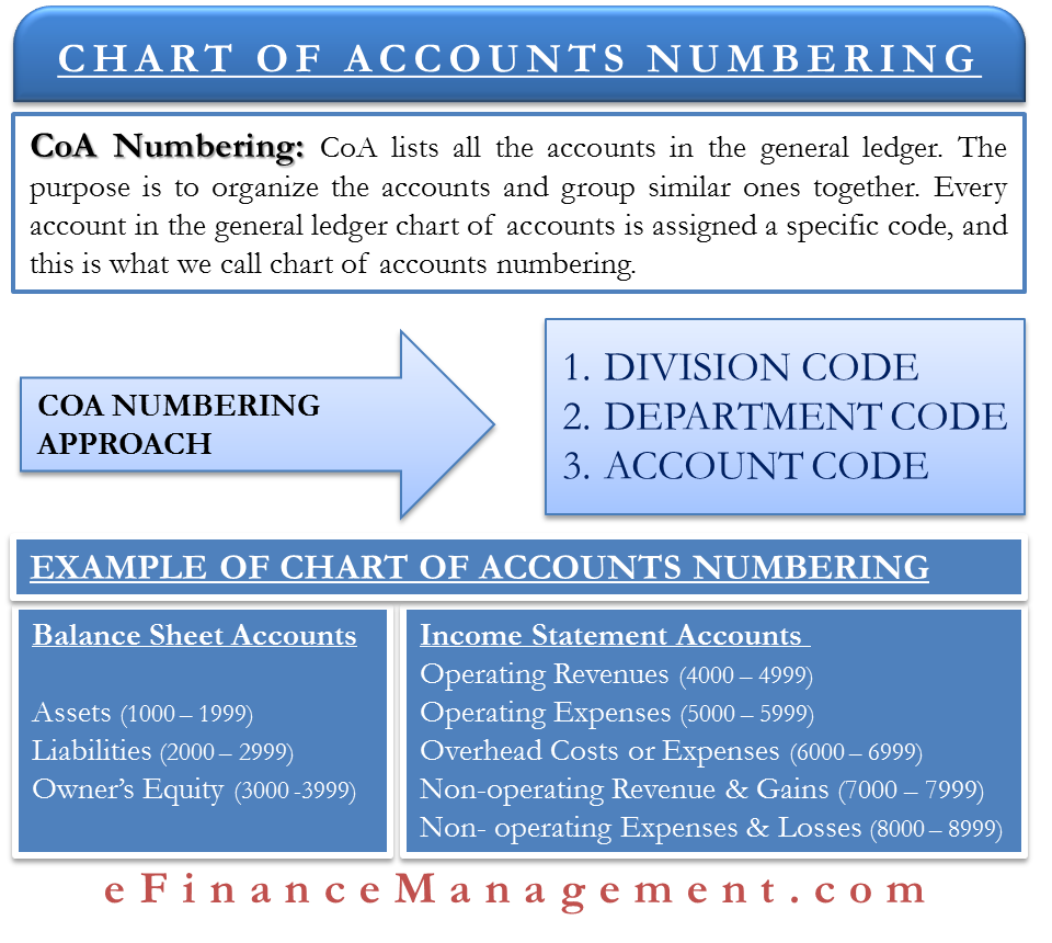 Chart Of Accounts Numbering Meaning Approach Example Efm