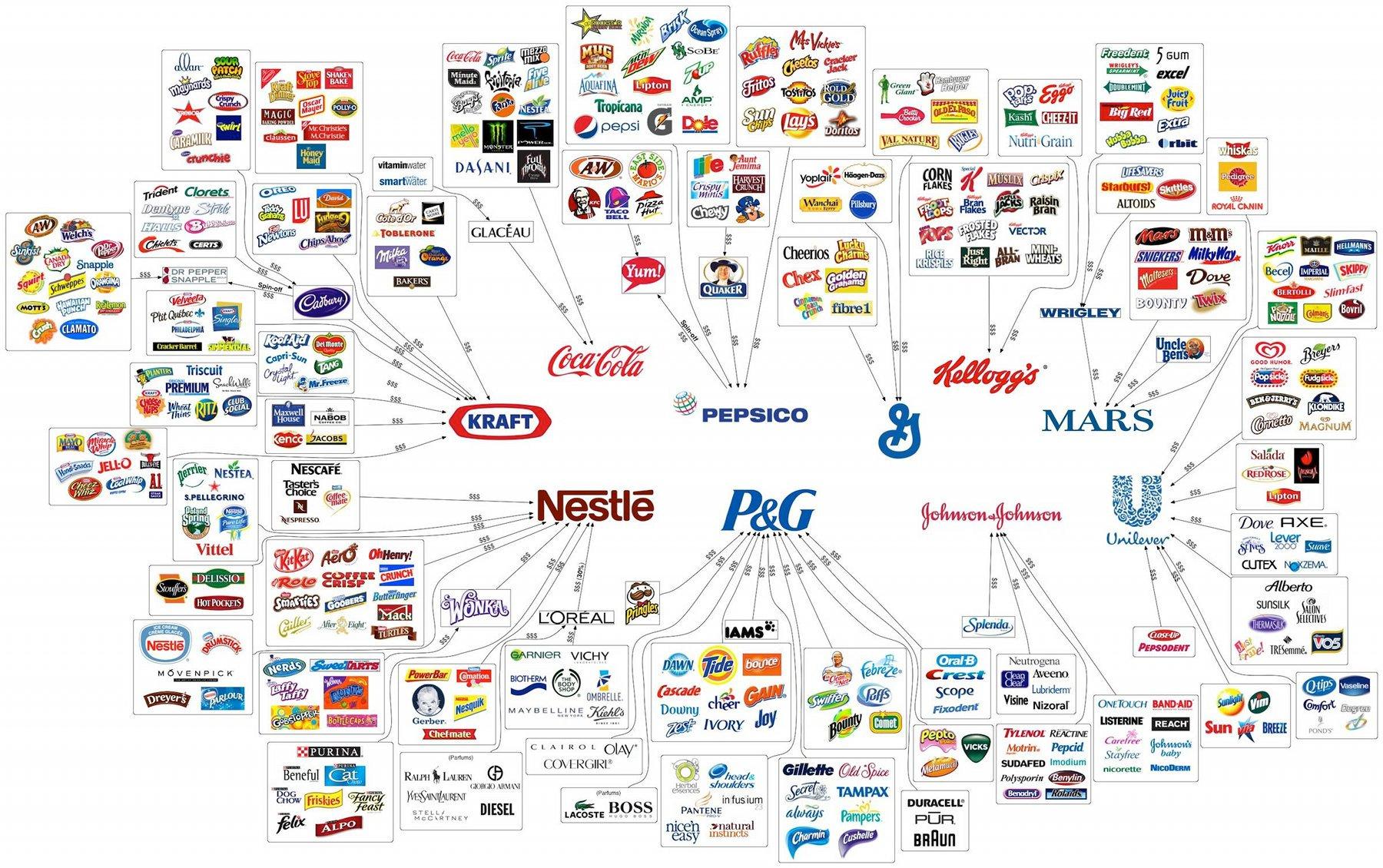 Subsidiary Company Example