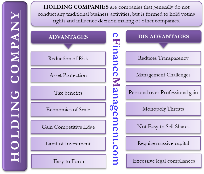 Advantages and Disadvantages of Holding Company