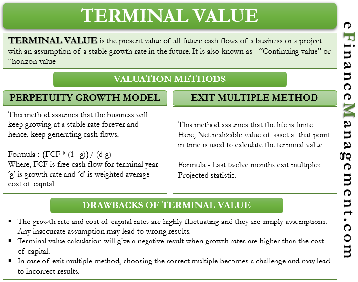 Terminal Value Meaning Methods Of Calculation Limitations