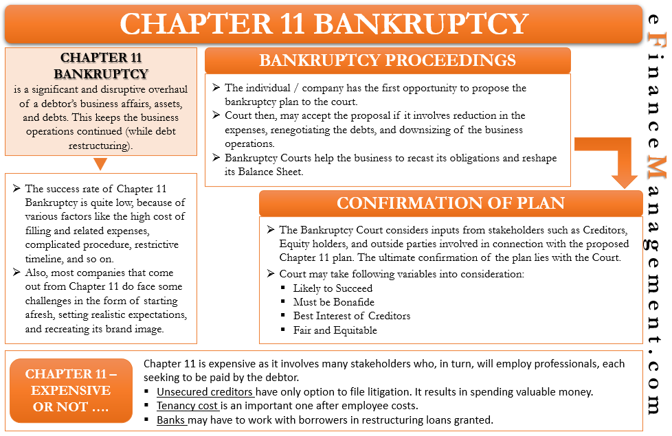Chapter 11 Bankruptcy