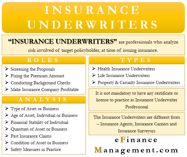 Insurance Underwriters | Meaning, Role, Types and More | eFM